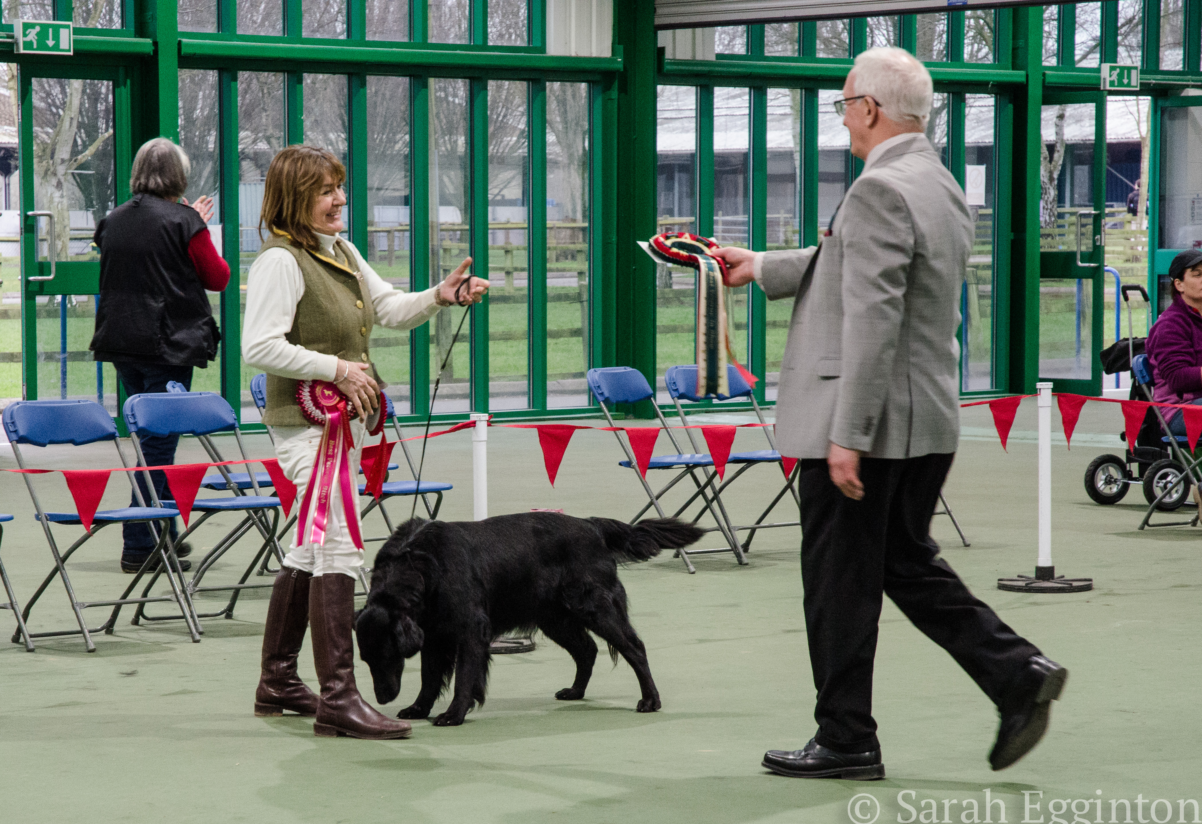 Breed show 48