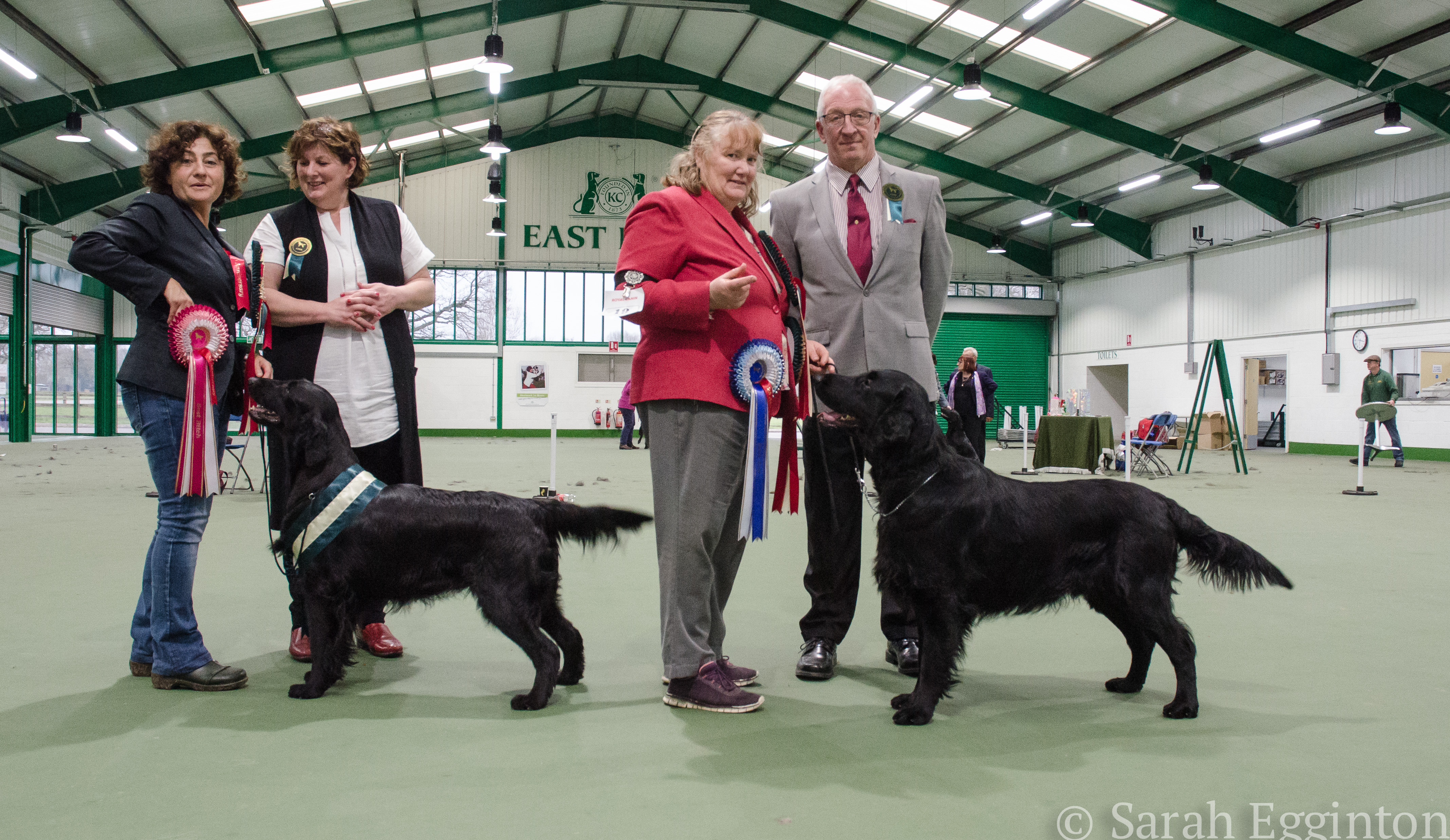 Breed show 56