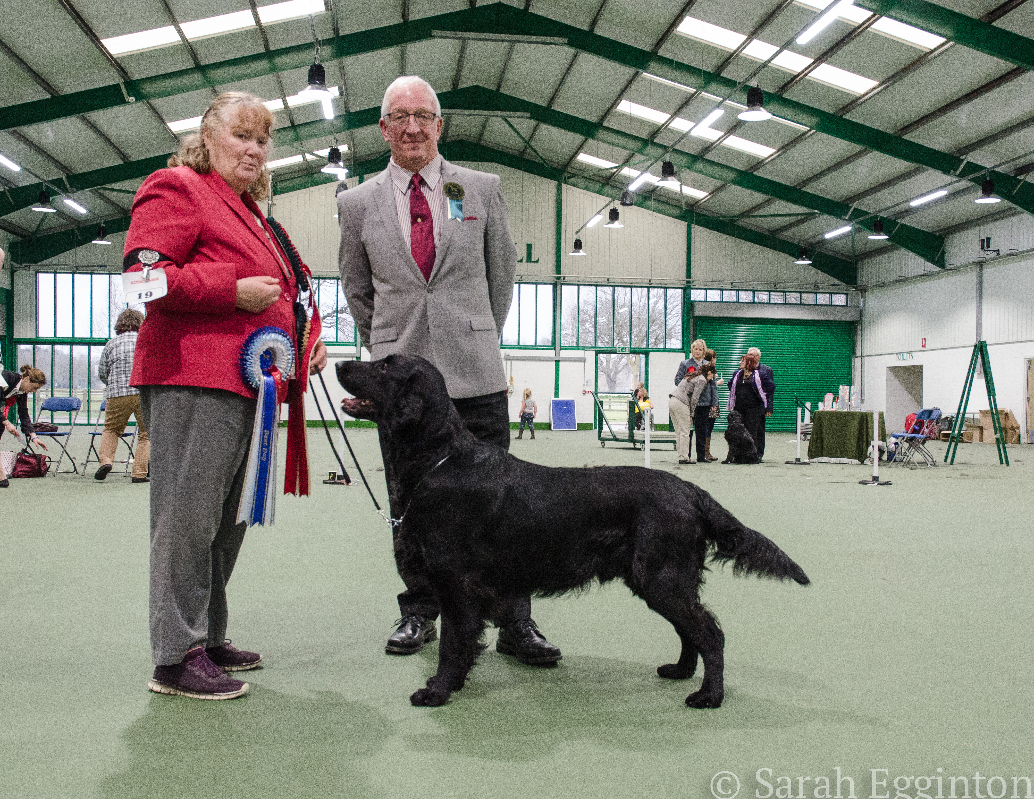 Breed show 58